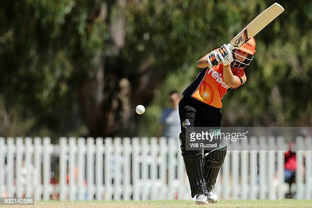 Nicole Bolton of the Scorchers bats during the Women's Big Bash League match between the Perth Scorcher and the Sydney Thunder at Lilac Hill on...