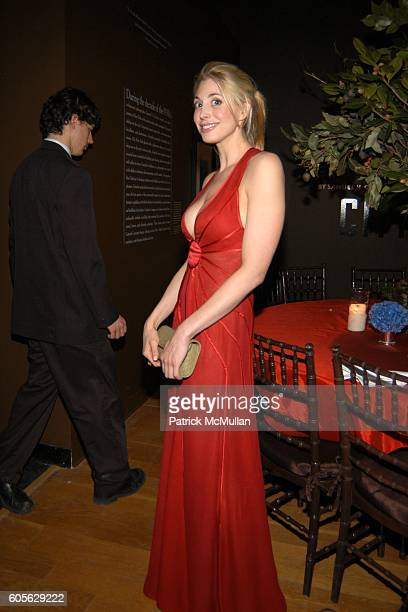 Nicole Helen attends The Museum of The City of New York The Directors Council 20th Annual Winter Ball at The Museum of The City of New York on...