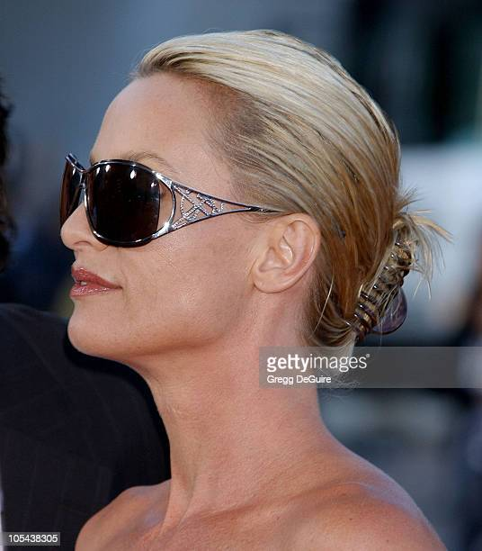 Nicollette Sheridan during 'Mr And Mrs Smith' Los Angeles Premiere Arrivals in Los Angeles California United States
