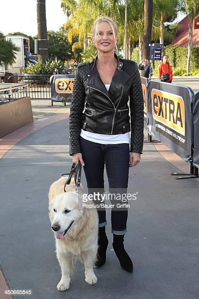 Nicollette Sheridan is seen on November 19 2013 in Los Angeles California