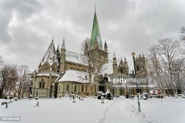 nidaros cathedral, trondheim, norway - cathedral stock pictures, royalty-free photos & images