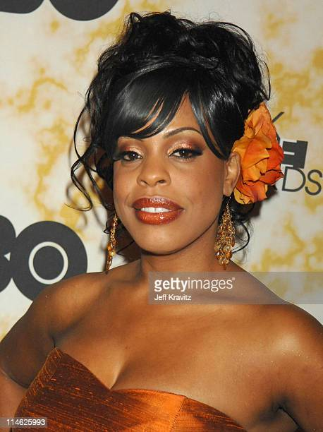 Niecy Nash during 2006 TNT Black Movie Awards HBO After Party in Los Angeles California United States