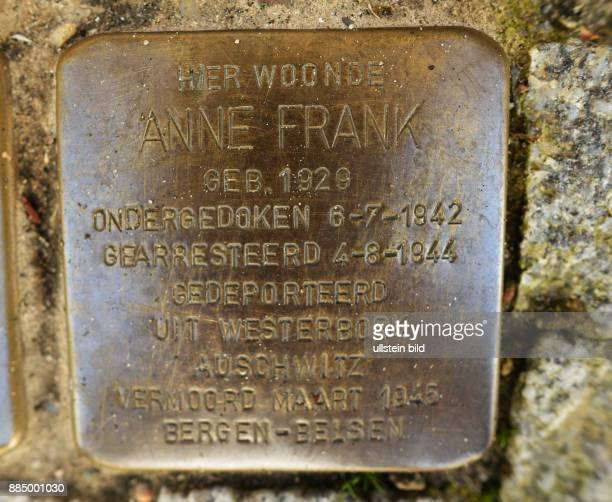 NLD Niederlande Amsterdam Niederlande AmsterdamStadtteil Rivierenbuurt Gedenken anAnne Frank Stolperstein für Anne Frank