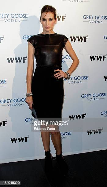 Nieves Alvarez attends Grey Goose auction photocall at ACero In studio on November 24 2011 in Madrid Spain