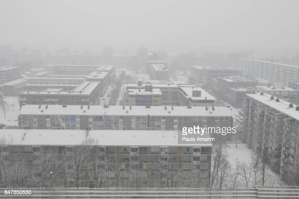 Niew West Outstirks of Amsterdam Covered in Snow