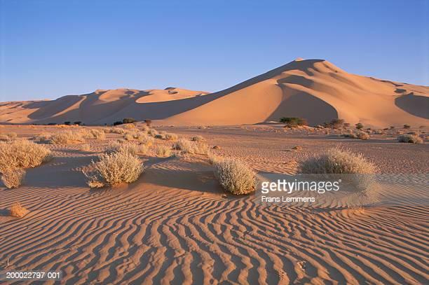 Niger, Sahara Desert, Tenere desert region, sand dunes of Temet