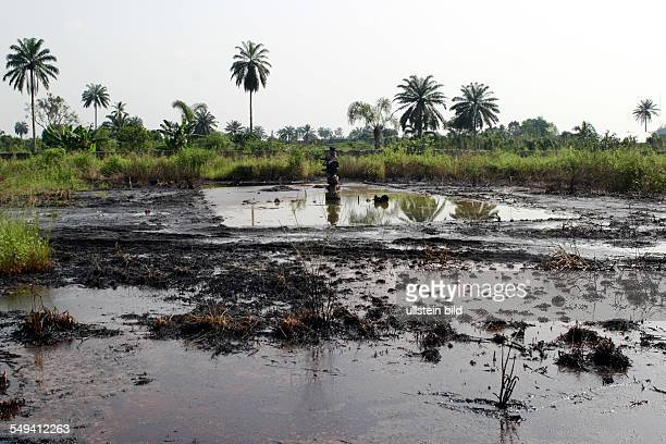 Nigeria Bomu Kpor Ogoni Area ecological destruction because petroleum