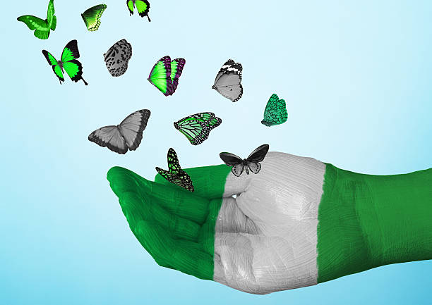 nigeria flag painted on hand with butterflies
