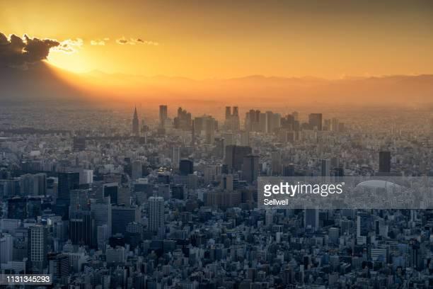 nigh view of tokyo from sky tree - 東京都庁舎 ストックフォトと画像