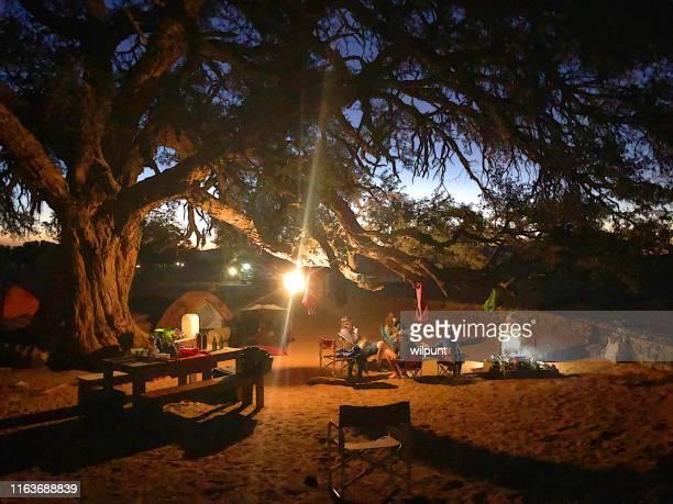 nachtcamping zusammen unter einem alten baum in der wüste - namibia stock-fotos und bilder