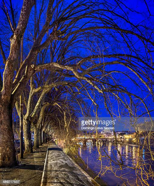 CONTENT] Night image of St Peter's Basilica Ponte Sant Angelo and Tiber River in Rome Italy