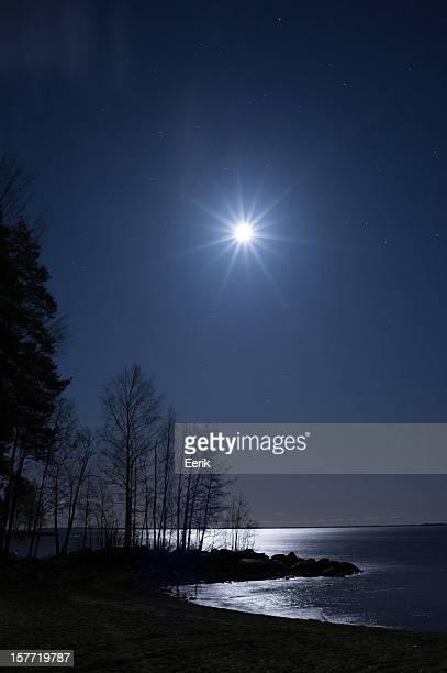Night landscape under starry sky