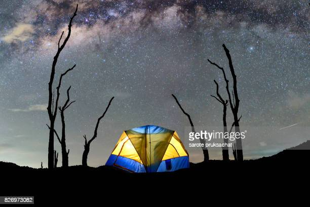 Night mountain landscape with illuminated tent. Silhouettes of death tree and  night sky with many stars and milky way on background illuminated yellow tent on foreground