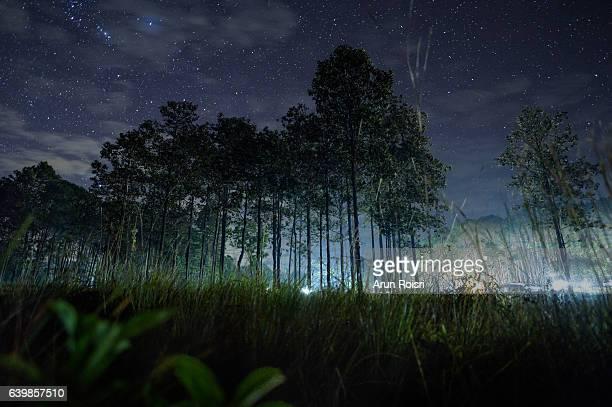 Night Photgraphy of Camping and Stars at Thung salaeng Luang National Park (Nong Mae na), Thailand