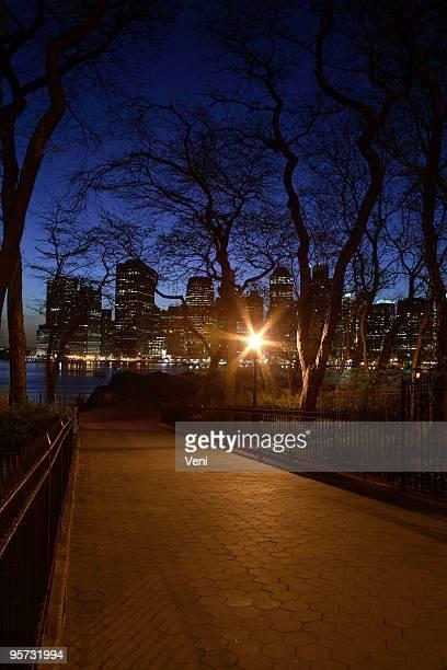 ブルックリンで夜にマンハッタン南部の眺め