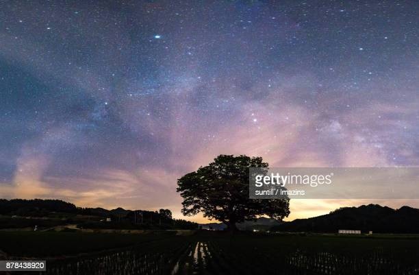Night scenery of landscape and starfield in Wonjeong-ri (Countryside)