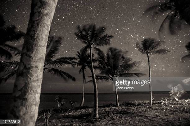 Night scenic of tropical Island, Belize