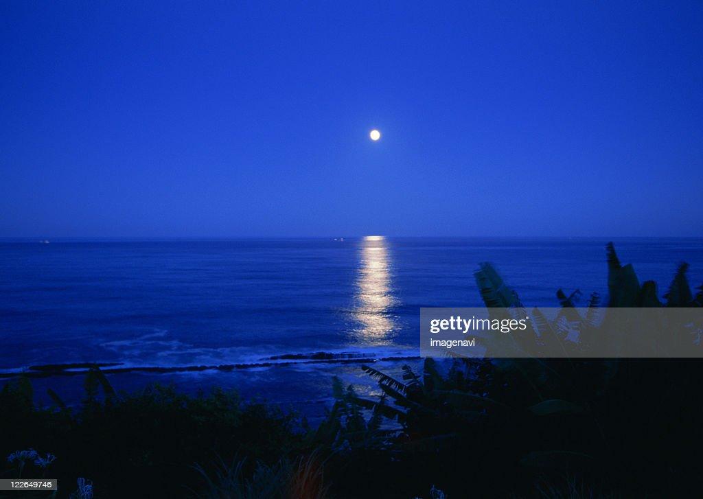 Night Sea : ストックフォト