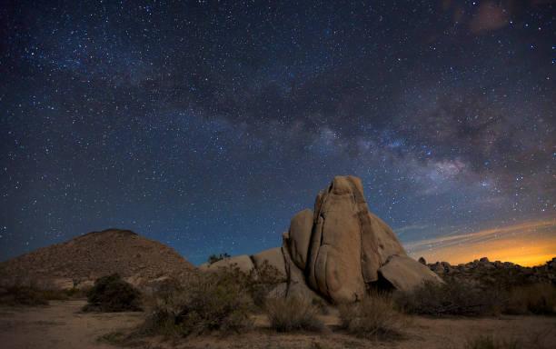 Night Sky At Joshua Tree National Park Wall Art