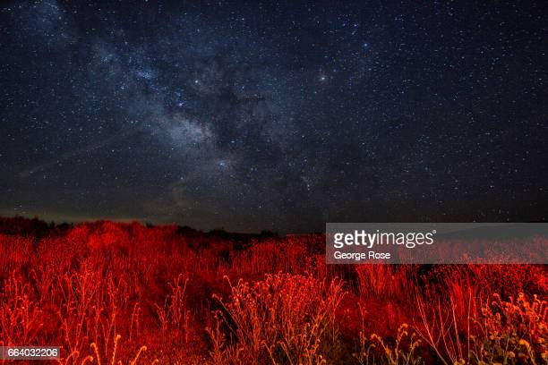A night sky filled with stars and car brake lights illuminating surrounding sage brush are viewed in the early morning hours before sunrise at...