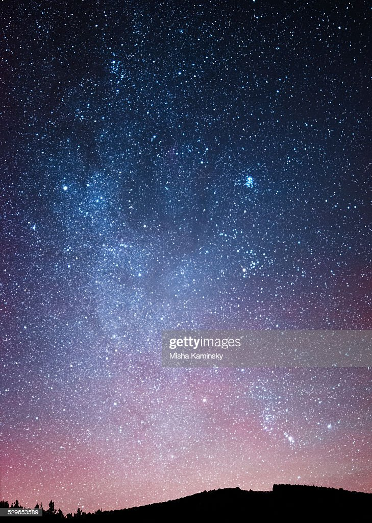 Night sky over the forest : Stock Photo