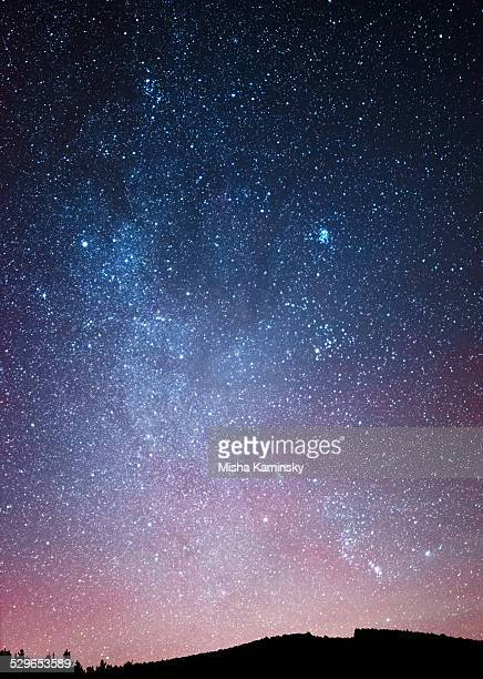 night sky over the forest - star field stock photos and pictures