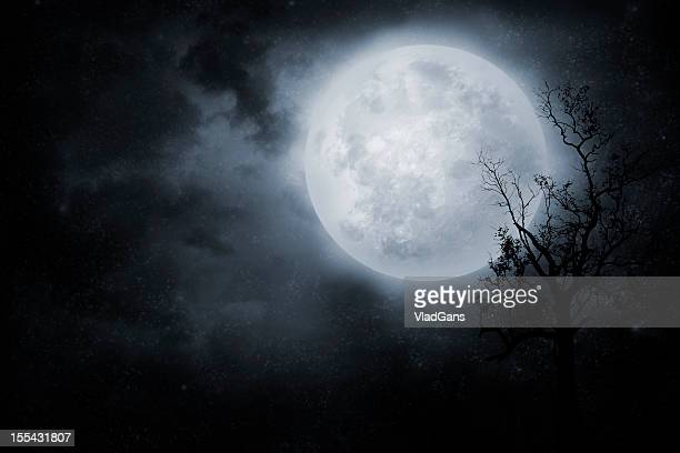 night sky - spooky stock pictures, royalty-free photos & images