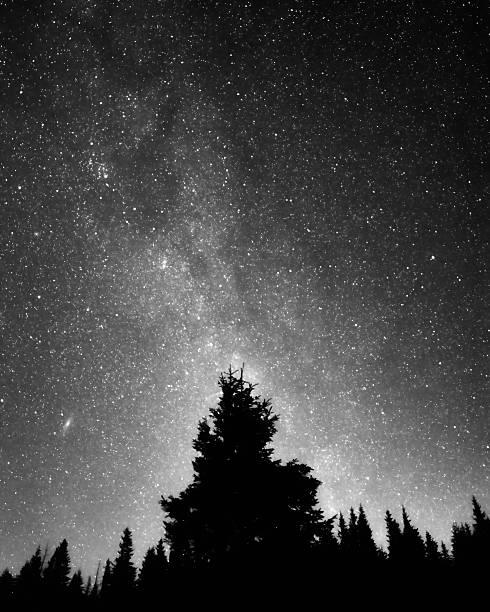 Night Sky Wall Art