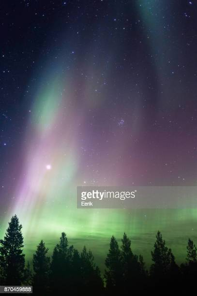 Night sky with Aurora Borealis, planet Jupiter and The Pleiades above boreal forest.