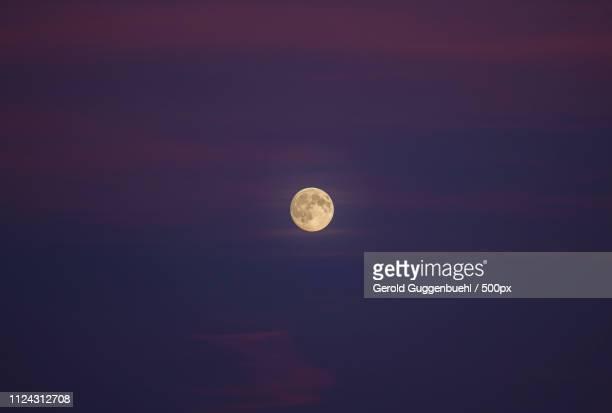 night sky with full moon - gerold guggenbuehl stock-fotos und bilder