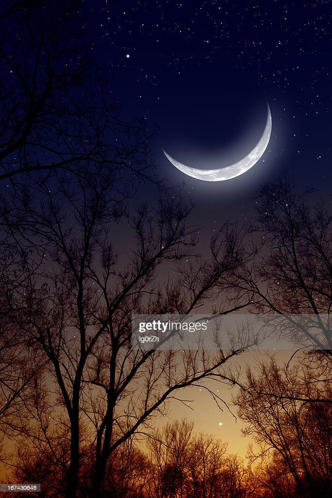 Céu de noite com Lua : Foto de stock