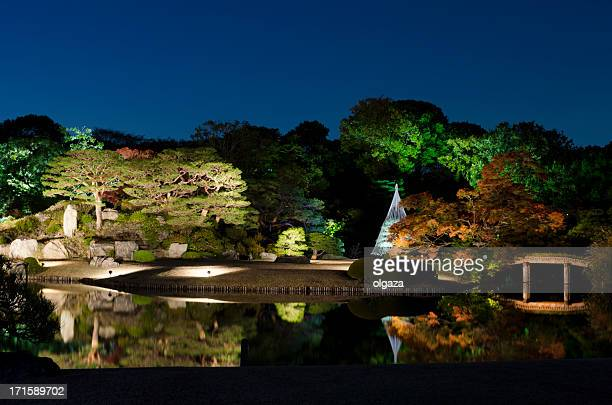 Night view of japanese autumn
