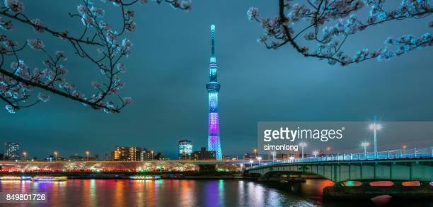 Night view of Tokyo Skytree in Asakusa, Tokyo, Japan