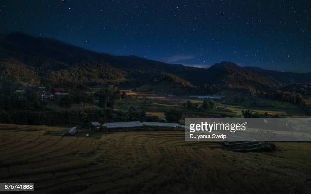 Night view on the rice field terrace at north Thailand.