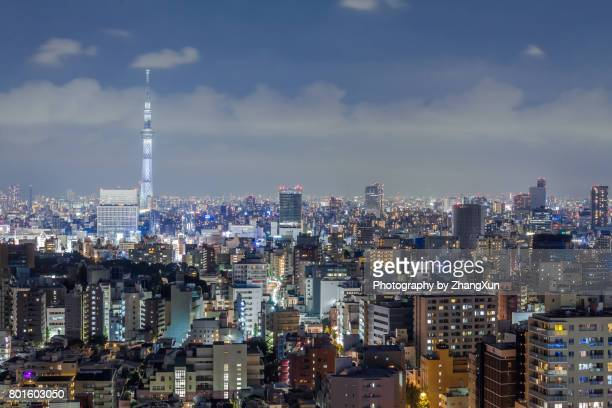 Night view over Tokyo skytree and buildings Aerial view in Tokyo, Japan.