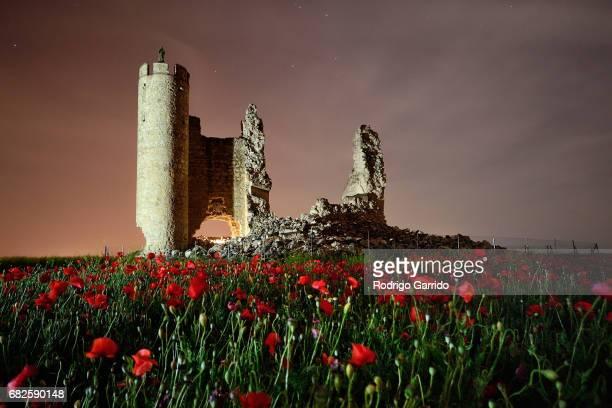 Nightscape of the Castle of Caudilla surronded by poppies, located in Santo Domingo-Caudilla, in Toledo Spain