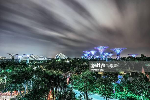 nightview singapore - singapore botanic gardens stock photos and pictures