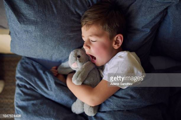 nighty night, sleep tight - yawning stock pictures, royalty-free photos & images