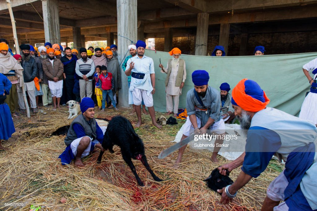Image result for sikh animal sacrifice