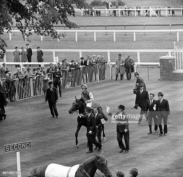 Nijinsky ridden by Lester Piggott is led into the winners enclosure