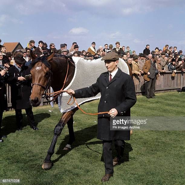 Nijinsky' winner of the 2000 Guineas raced over the Rowley Mile at Ascot in the wiiners enclosure