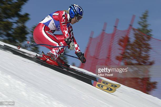 Nika Fleiss of Croatia competes in the women's giant slalom during the Salt Lake City Winter Olympic Games on February 22 2002 at Park City Mountain...