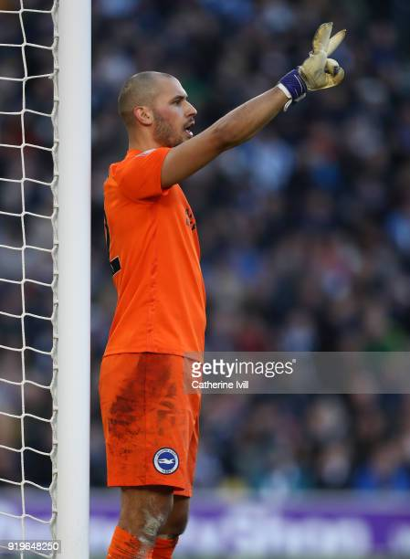 Niki Maenpaa of Brighton and Hove Albion during the Emirates FA Cup Fifth Round match between Brighton and Hove Albion and Coventry City at Amex...