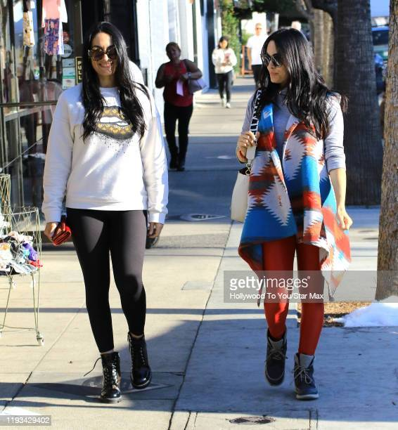 Nikki Bella and Brie Bella are seen on January 12 2020 in Los Angeles