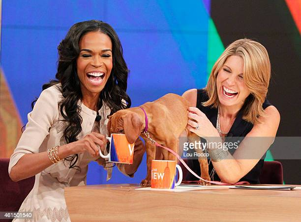 THE VIEW Nikki Glaser and Michelle Williams guest cohost Guests include Dr Oz and YouTube star Lindsey Stirling today Monday January 12 2015 on Walt...