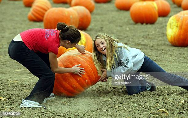 Nikki Martinez and friend Brooke Nixon attempt to turn over a giant pumpkin while visiting the 29th annual faulkner farm pumpkin patch and harvest...