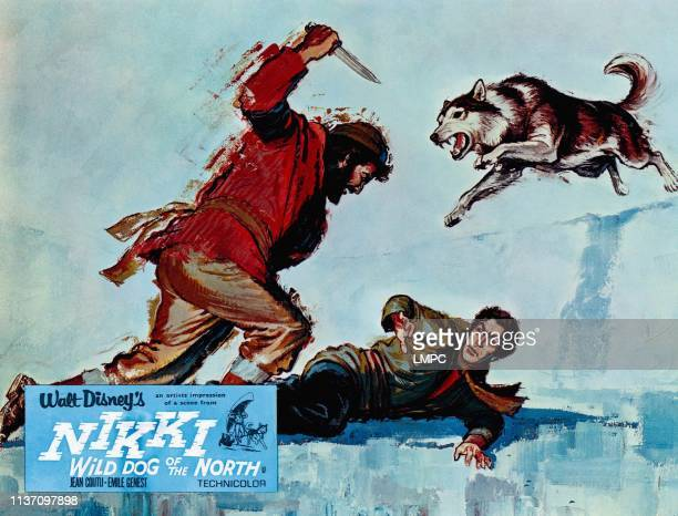 Nikki poster WILD DOG OF THE NORTH 1961
