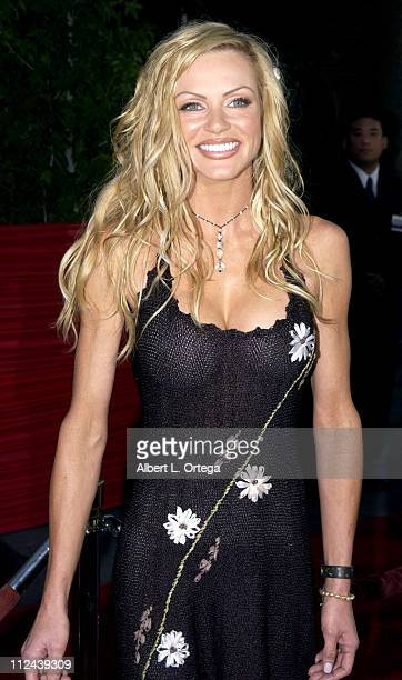 Nikki Ziering During American Wedding Premiere In Universal City California United States