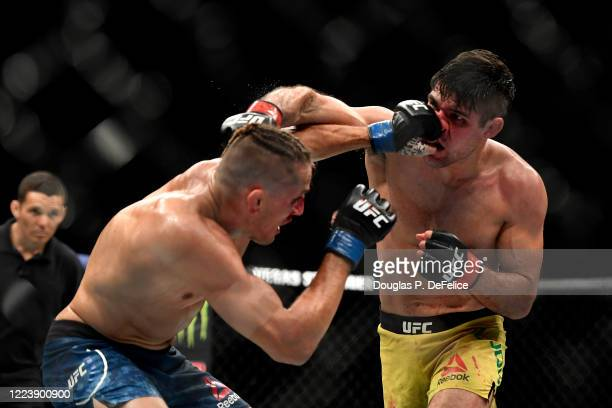 Niko Price of the United States punches Vicente Luque of the United States in their Welterweight fight during UFC 249 at VyStar Veterans Memorial...