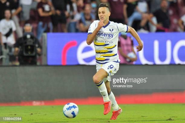 Nikola Kalinic player of Hellas Verona, during the match of the Italian Serie A league between Salernitana vs Verona, final result 2-2, match played...